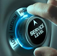 service-level11